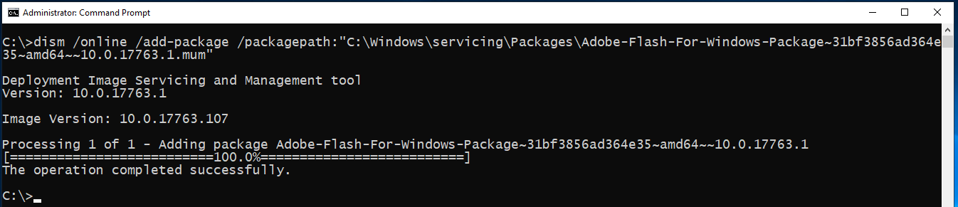 Image showing command line installation of Flash Player on Windows Server 2019